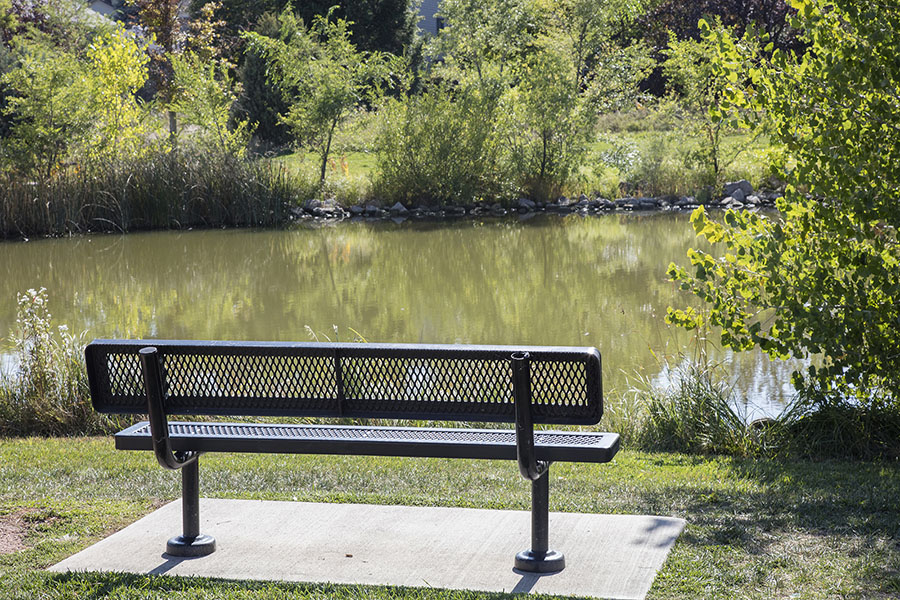 Park with bench in front of tree lined stream.