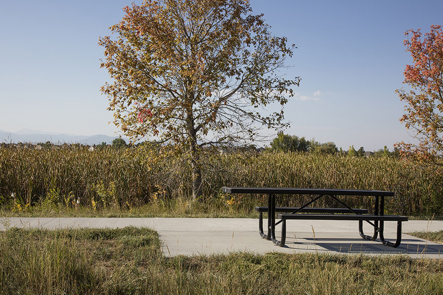 Park with wide paved walkways, picnic table, and grassy areas with tall trees.