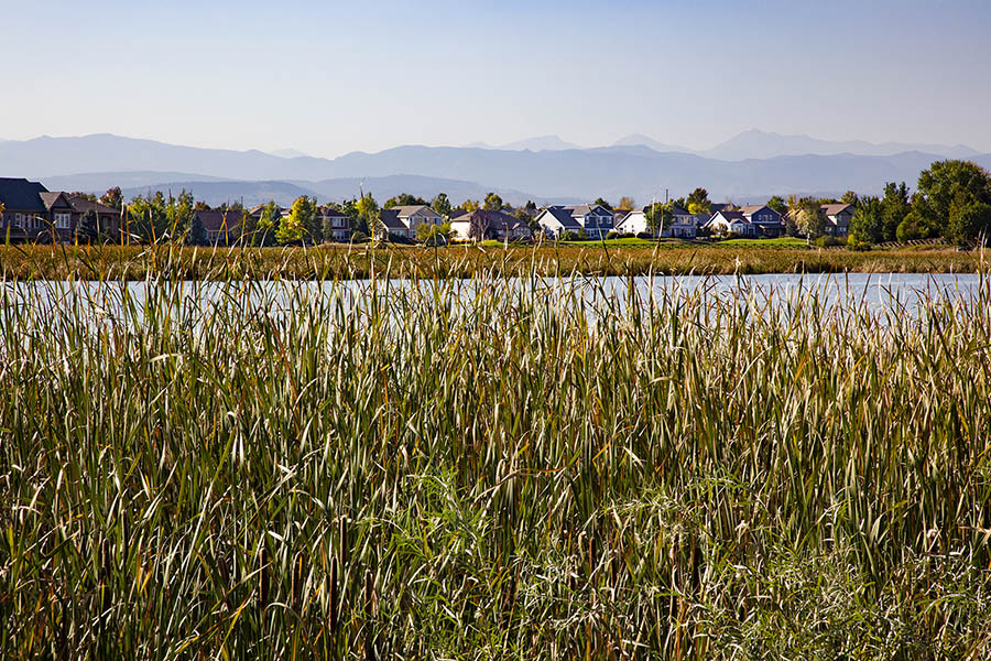 Lake with tall reeds, houses dotting opposite shoreline, and distant mountains.